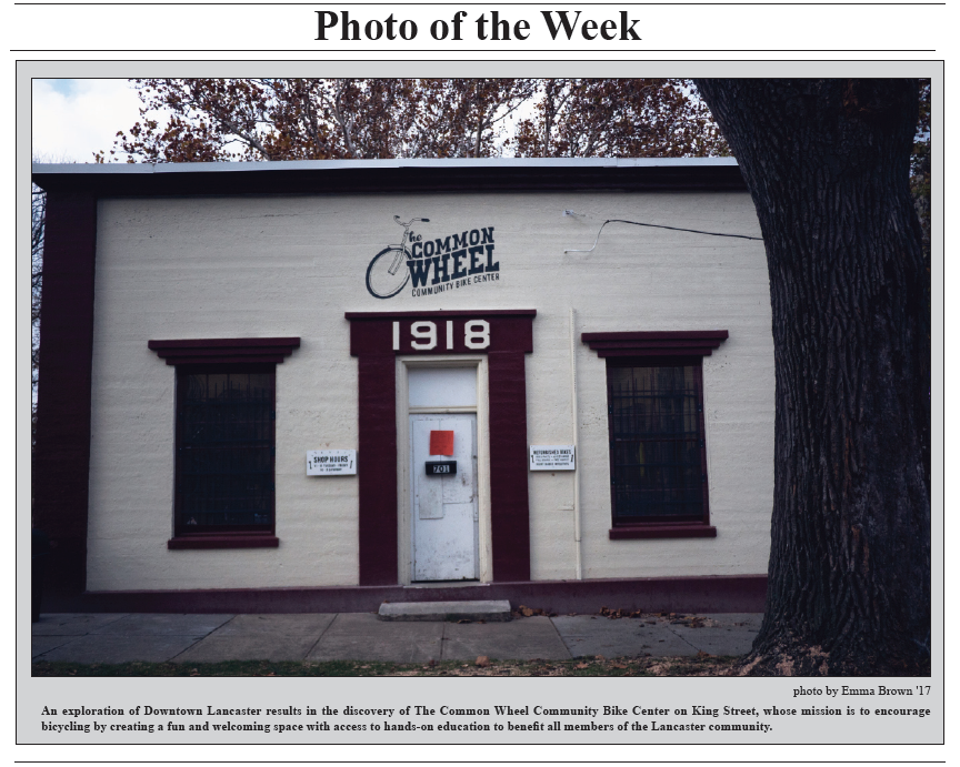 TCR 11-17-14 Photo of the Week