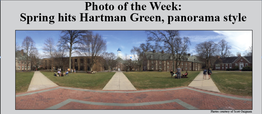 Photo of the Week, 4/6/15: Spring Hits the Hartman Green